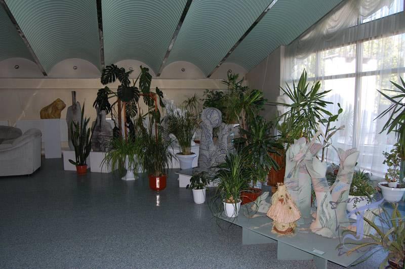 Зимовий сад у Полтавському художньому музеї