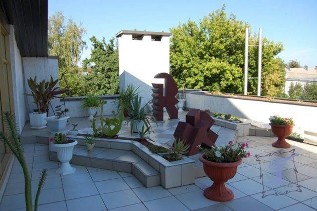 Зимовий сад - рекреаційна зона у Полтавському художньому музеї