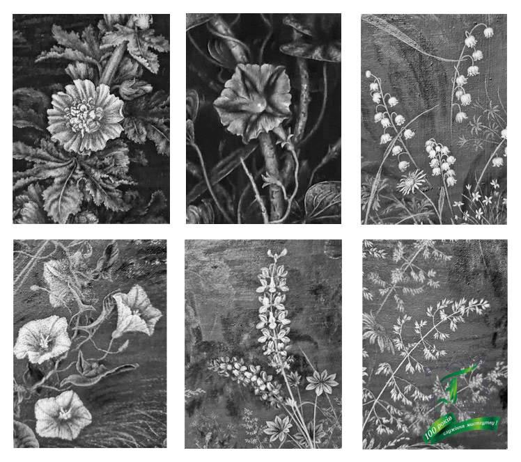Квіти (1942), фрагменти знебарвлені