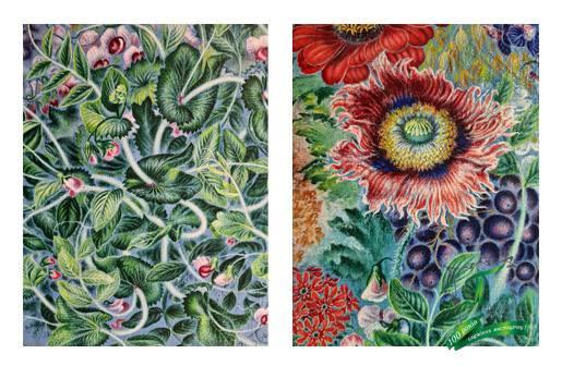 Пшениця, квіти, виноград (1950-1952), фрагменти